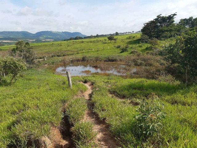 Sitio em monte santo de minas 13 alqueires 1.299.000.00 - Foto 8