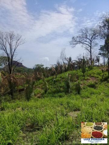FAZENDA À VENDA EM RECURSOLÂNDIA - TO - DE 156 ALQUEIRÕES (Dupla aptidão) - Foto 5