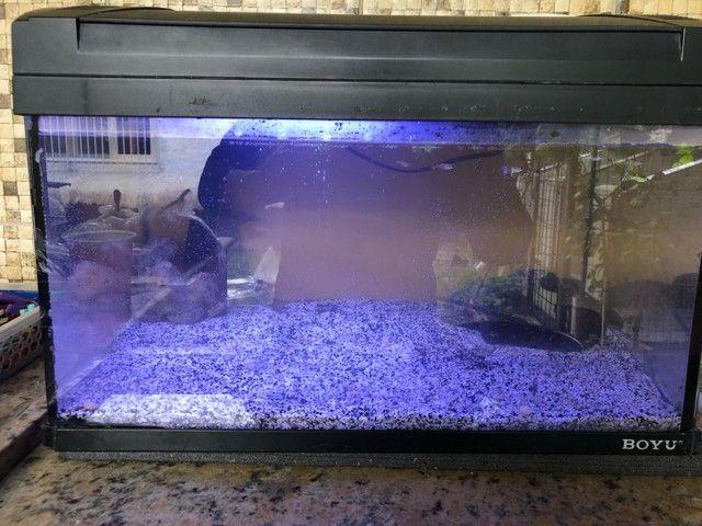 Substrato importado para aquário $20 reais