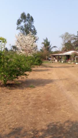 23 hectares p cultura e Psicultura - Foto 18