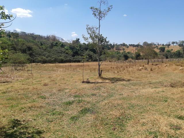 Urgente Vendo Meio Alqueire Prox a Teresópolis e Goianápolis Nerópolis Urgente Muita Água - Foto 2