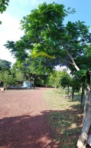 Chácara a 28km sentido Palmas X Aparecida do Rio Negro, confira!!! - Foto 7