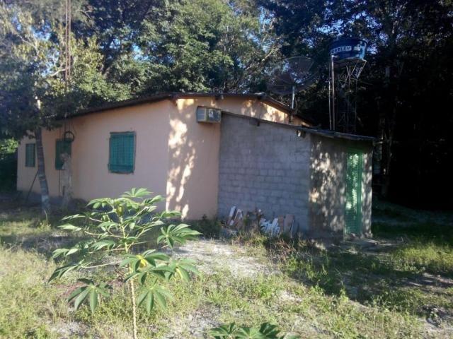 Chácara rural à venda, Zona Rural, Nova Crixás. - Foto 2