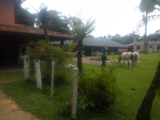 Fazenda em Tijucas do Sul -PR - Foto 8