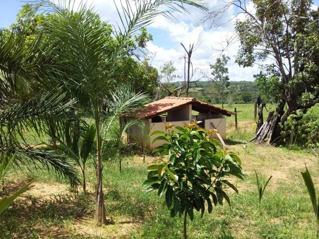 Vendo chácara no município de caldas novas - Foto 6