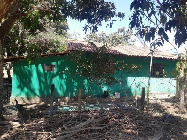 Urgente Vendo Meio Alqueire Prox a Teresópolis e Goianápolis Nerópolis Urgente Muita Água - Foto 3