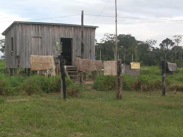 Vendesse um colônia estrada de porto acre ramal pira pora 28 km de ramal - Foto 4