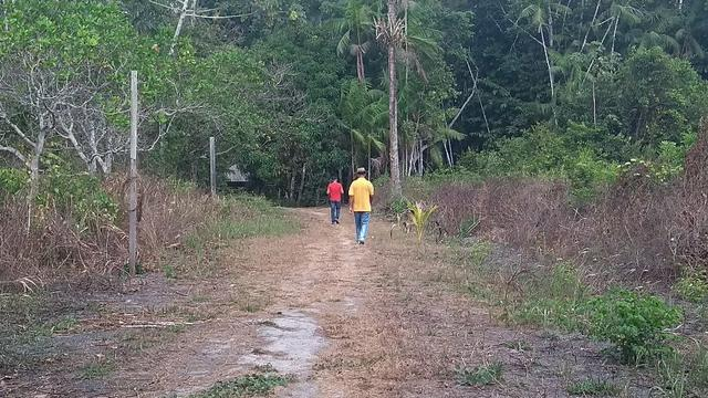 50 hectares a 25 km de castanhal por 250 mil zap * - Foto 7