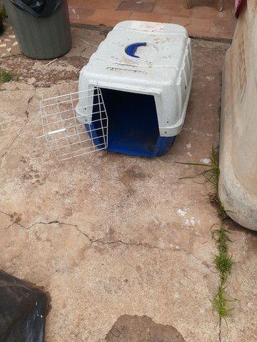 CAIXA PARA TRANSPORTAR ANIMAIS - Foto 3