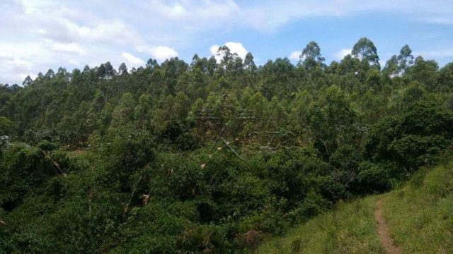 RGK - Chácara/fazenda com uma casa por 2.200.000 wats * - Foto 6