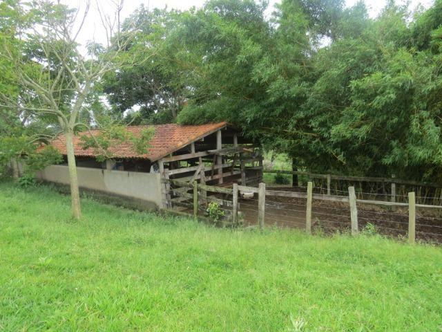 REF 1152 Sítio 4 alqueires, casa sede, piscina, açudes, curral, rio, Imobiliária Paletó - Foto 20
