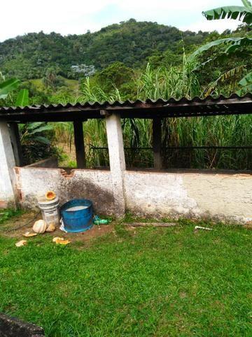 Belíssima fazendinha em Guapimirim oportunidade!!! - Foto 15