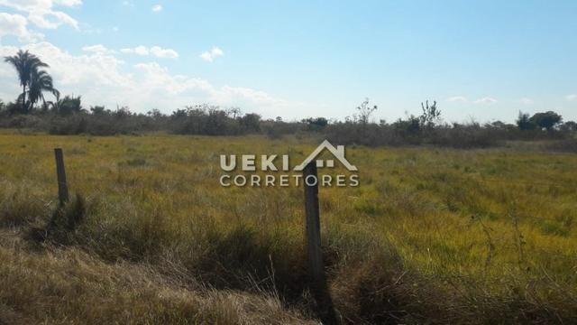 Área rural 14.000 ha. MT - Foto 4