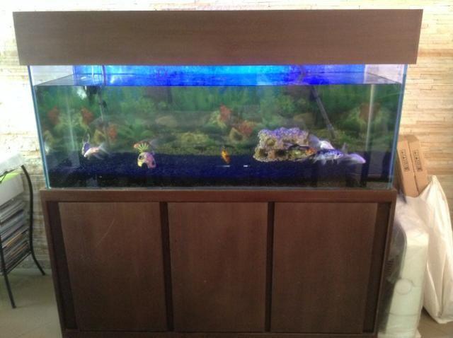 Vendo ou Troco Aquário Completo 450 litros. não tenho espaço para o aquário.