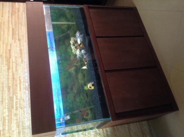 Vendo ou Troco Aquário Completo 450 litros. não tenho espaço para o aquário. - Foto 6