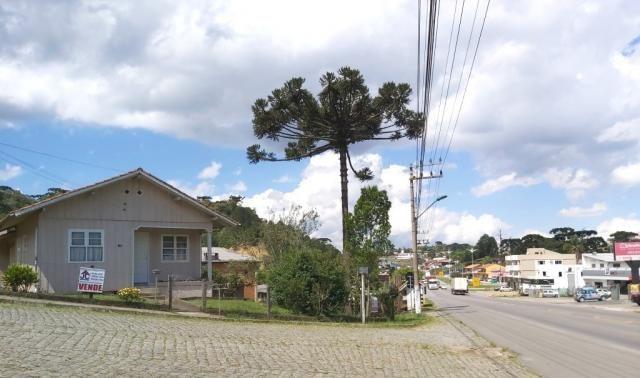 EXCELENTE TERRENO COMERCIAL AS MARGENS DA BR 280 - VILA NOVA - RIO NEGRINHO SC