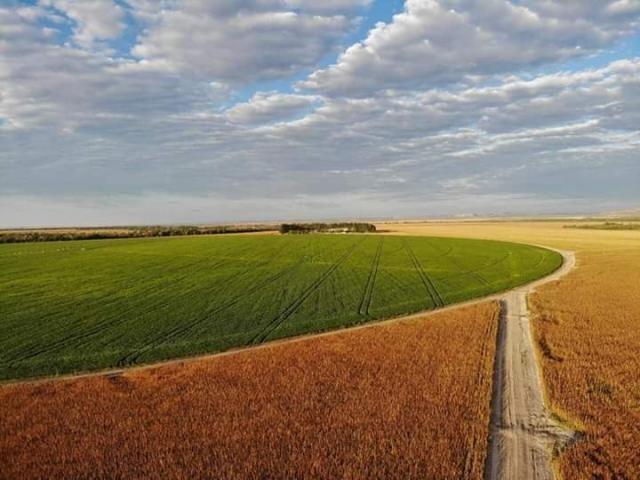 8271 | Fazenda à venda com 10 quartos em ZONA RURAL, BALSAS - Foto 6