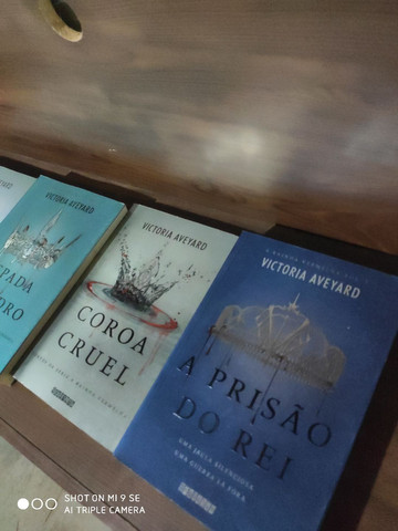 livros de variados títulos ,para pessoas exigentes - Foto 6