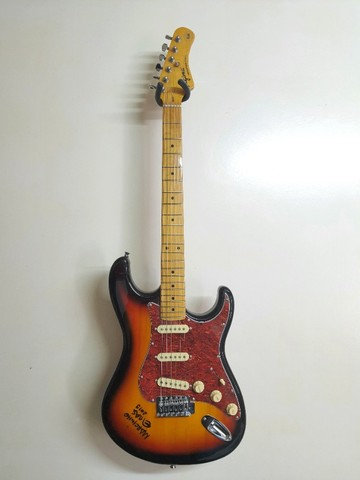 Guitarra Stratocaster Tagima TG530 Woodstock series
