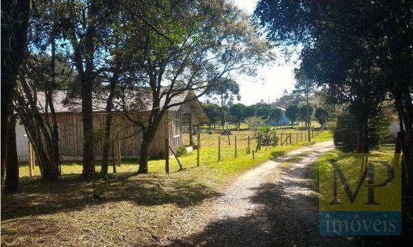 Sítio à venda, 44300 m² por R$ 900.000,00 - Zona Rural - Rio Negrinho/SC - Foto 8