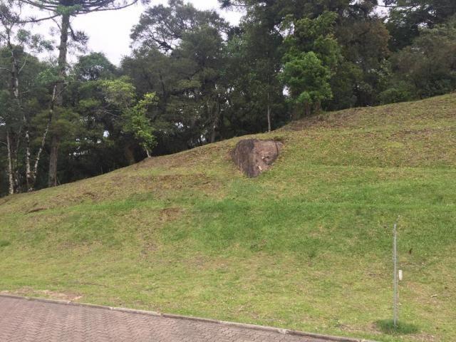 Terreno à venda, 1050 m² por r$ 779.249,00 - centro - canela/rs - Foto 4