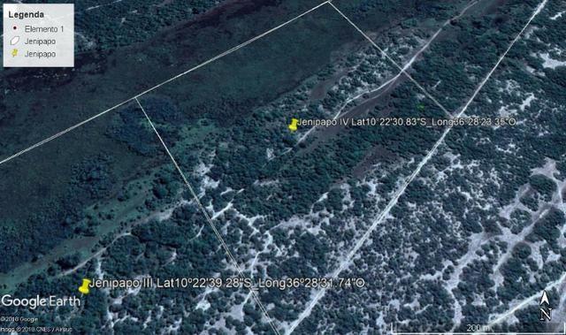 Jenipapo 840.000m2 pasto e floresta nativa - Foto 7