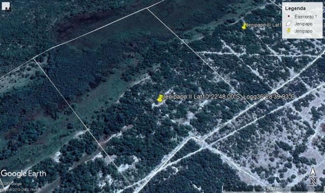 Jenipapo 840.000m2 pasto e floresta nativa - Foto 6