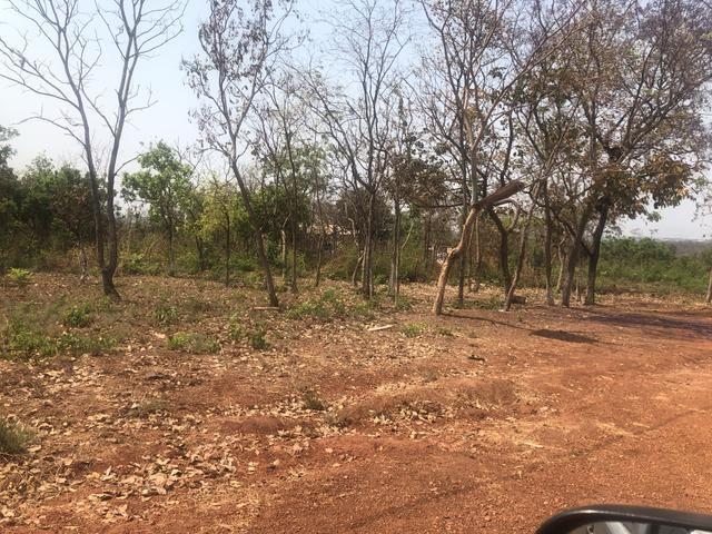 Terrenos jd niteroi II - Foto 2