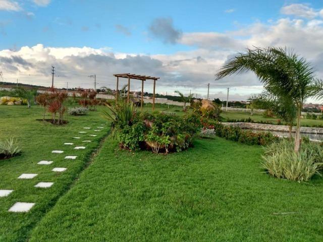 Oportunidade Passo Lote nascente R$65.000,00 Facilito entrada Jardimdas Tulipas - Foto 11