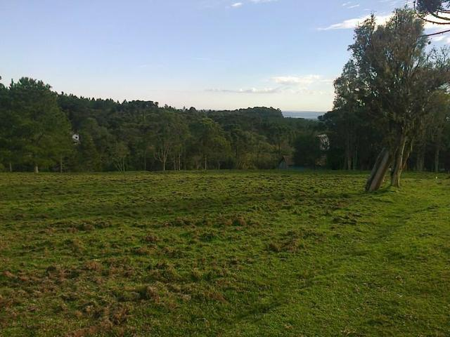 Maravilhoso Sítio - 10 hectares - Lages - Foto 2