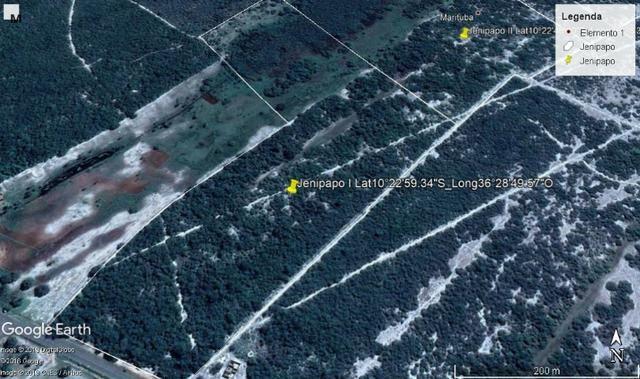 Jenipapo 840.000m2 pasto e floresta nativa - Foto 4