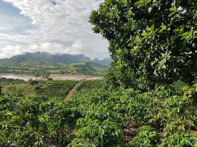 Sítio em Colatina na ES 248 na beira do Rio Doce - Foto 14