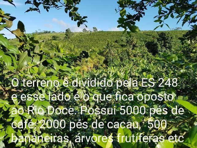 Sítio em Colatina na ES 248 na beira do Rio Doce - Foto 4