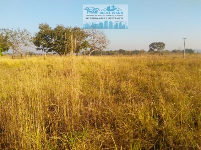 Chácara 60 hectares há 5 km do asfalto da Estrada da Guia - Foto 7