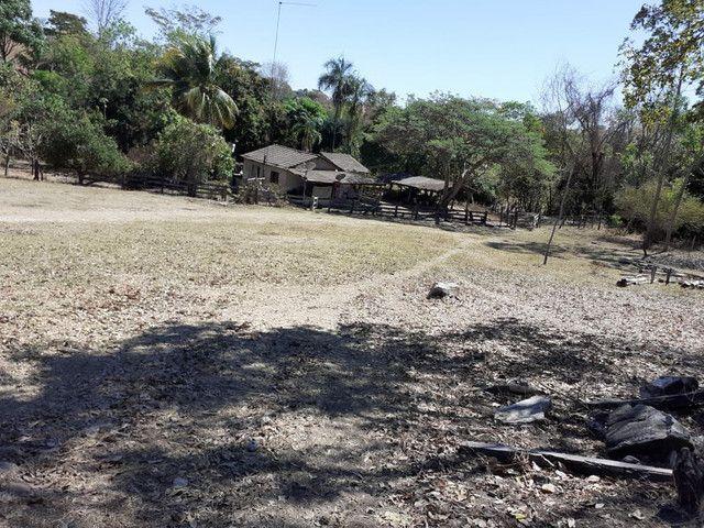 Terra assentamento 30 anos 7 alqueires  - Foto 6