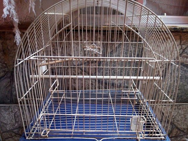 Viveiro gaiola - Foto 2