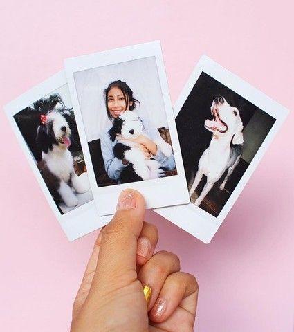 Fotos tipo polaroids