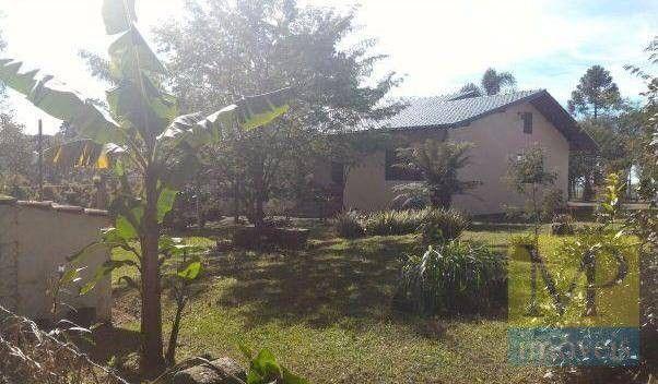 Sítio à venda, 44300 m² por R$ 900.000,00 - Zona Rural - Rio Negrinho/SC - Foto 14