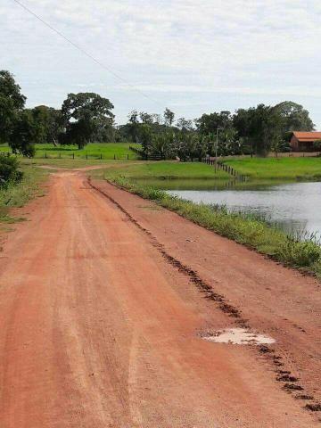 Fazenda 250 Alqueires Porto Nacional Tocantins