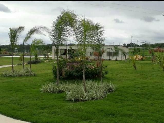 Oportunidade Passo Lote nascente R$65.000,00 Facilito entrada Jardimdas Tulipas - Foto 9