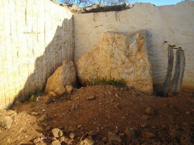 Exploração de Minério , terreno para plantação e criação de gado - Foto 5