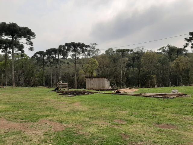 Fazenda de 100 Alqueires. 70 de capoeira - 16 km da Colônia Vitória. Guarapuava PR - Foto 2