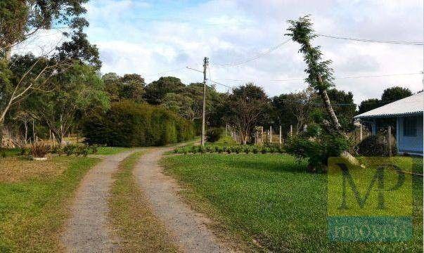 Sítio à venda, 44300 m² por R$ 900.000,00 - Zona Rural - Rio Negrinho/SC - Foto 6