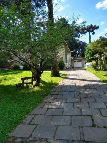 Terreno à venda, 1321 m² por r$ 3.000.000,00 - centro - canela/rs - Foto 6