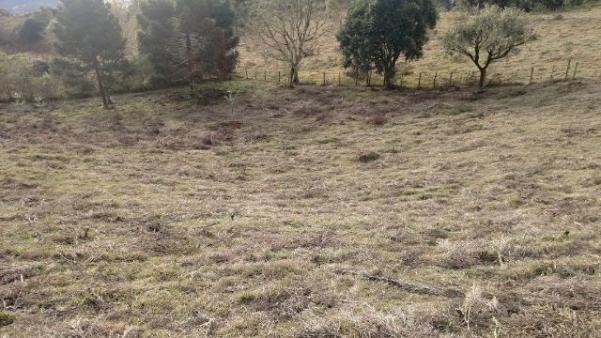 Terreno em Urubici com vista para cidade. Aceito carro