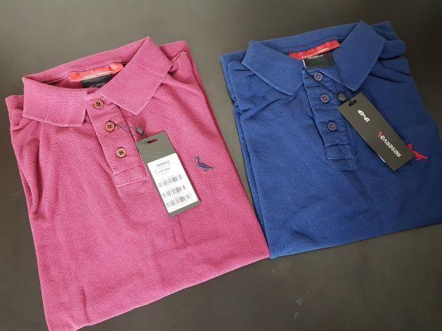 Camisas polo originais Reserva Colcci Ralph Thommy f4510ea52d3