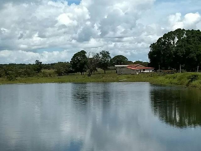 Fazenda Pium Tocantins
