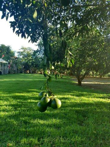 Fazenda 14 Alqueires Buritirana To