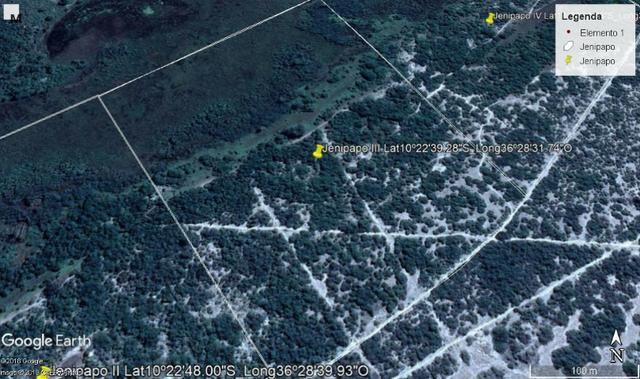 Jenipapo 840.000m2 pasto e floresta nativa - Foto 5
