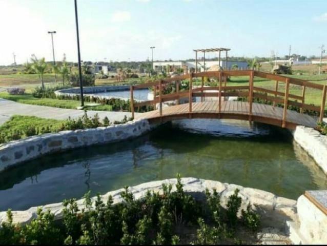 Oportunidade Passo Lote nascente R$65.000,00 Facilito entrada Jardimdas Tulipas - Foto 4
